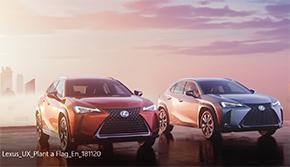 : Lexus UX Plant